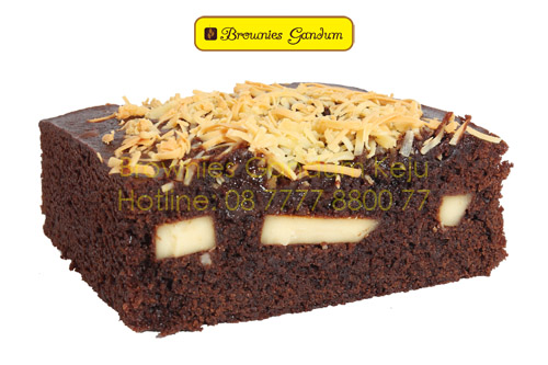 Brownies Gandum Keju